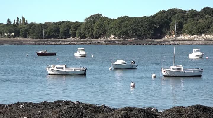 Thumbnail Rade de Brest : À la reconquête de la qualité de l'eau