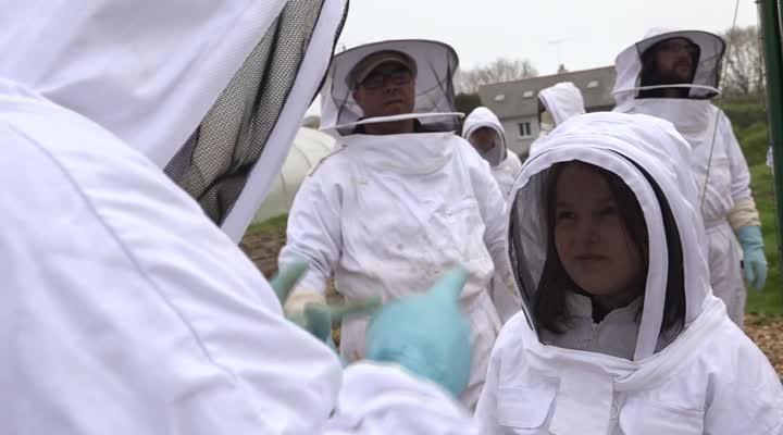 Thumbnail Face à la mortalité des abeilles, un collectif fait adopter des ruches