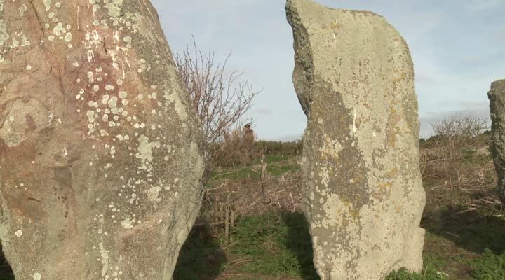 Thumbnail Bretagne vivante entretient l'îlot d'Er Lannic pour accueillir les oiseaux marins