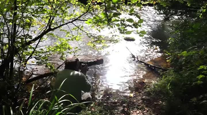 Thumbnail Le Trégor accueille la première réserve de vie sauvage de Bretagne