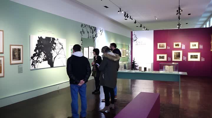 Thumbnail L'art en arbres : la nouvelle exposition temporaire du musée des beaux arts de Brest