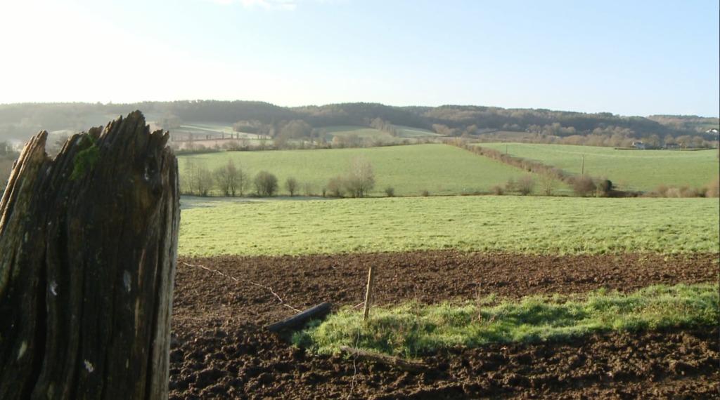 Thumbnail Agriculture : ils misent sur une production diversifiée