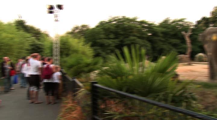 Thumbnail Zoo de Pont-Scorff : les salariés en grève