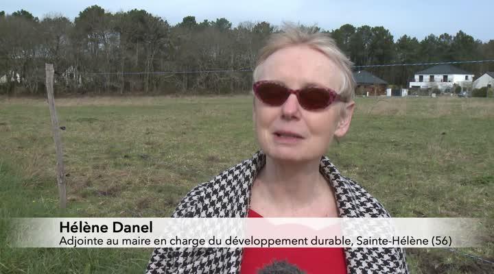 Thumbnail Sainte-Hélène prépare son école 100% recyclable