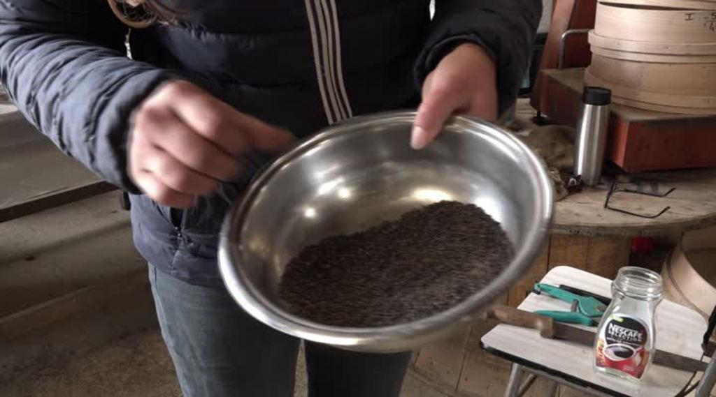 Thumbnail Semences : des agriculteurs bio veulent leurs propres graines