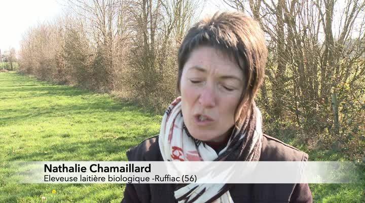 Thumbnail Changement climatique : des fermes s'adaptent