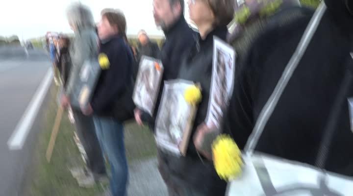 Thumbnail Veillée végane devant l'abattoir Doux à Châteaulin