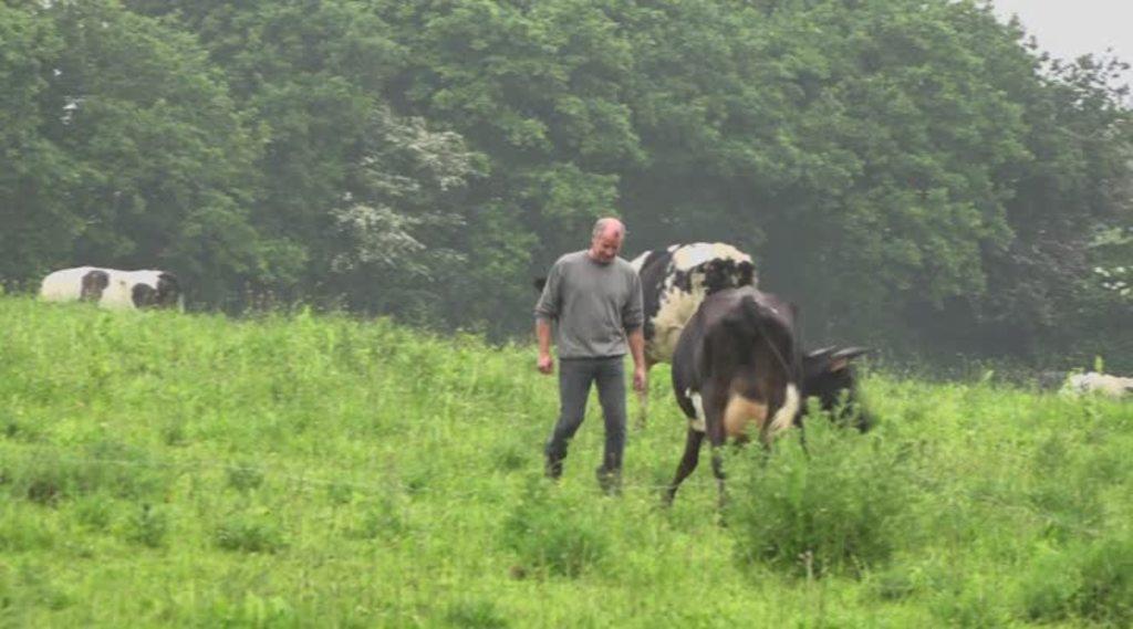 Thumbnail GLYPHOSATE : la décision de l'assemblée nationale divise la profession agricole